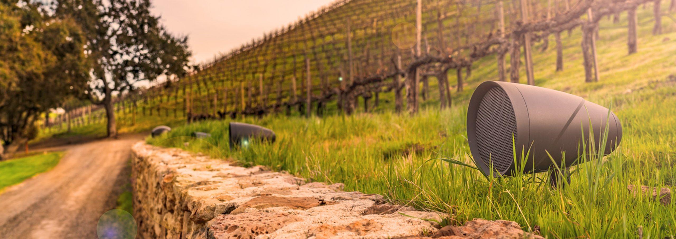 Sonance Takes A Wine Safari